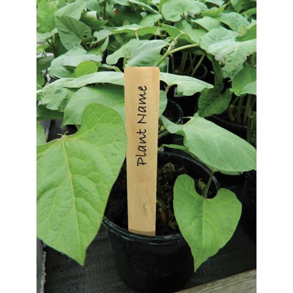 4 inch wooden plant labels